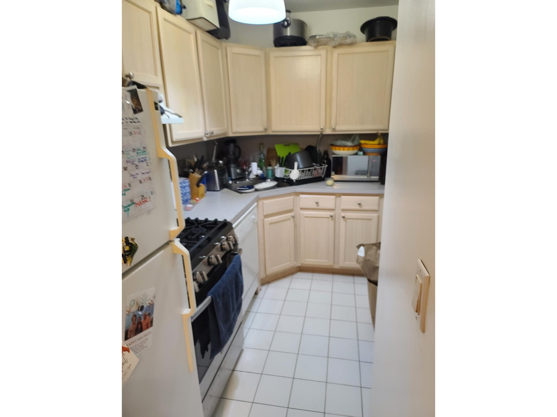893 Pacific Street Prospect Heights Brooklyn NY 11238