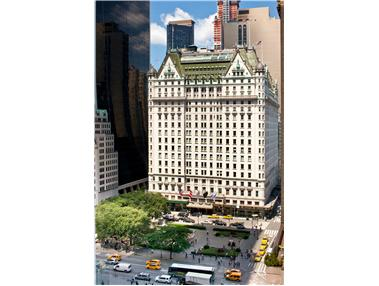 The Plaza Residences, 1 Central Park South, 1211 - Central Park South, New York