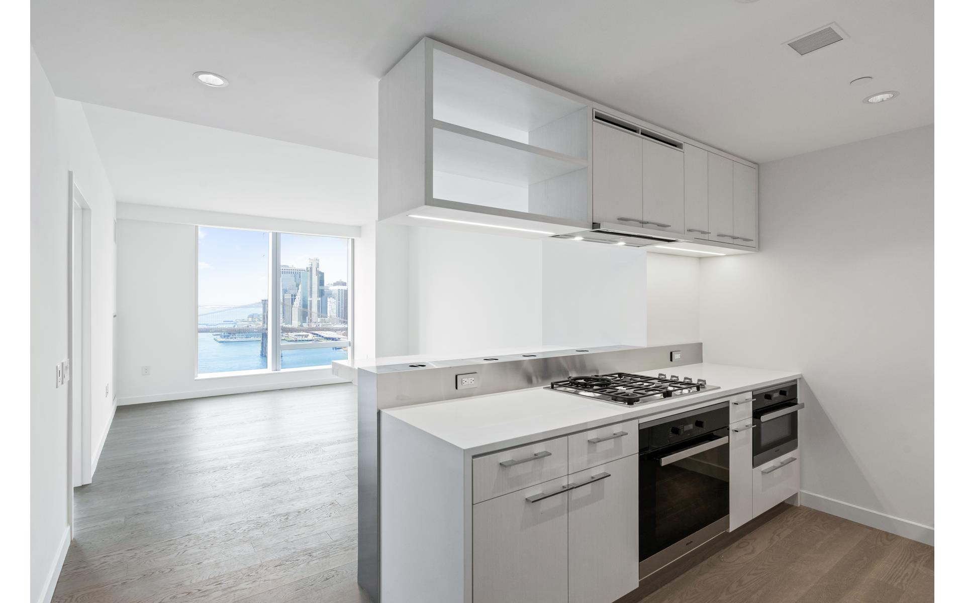 One Manhattan Square, 252 South Street Unit 26C | Rene